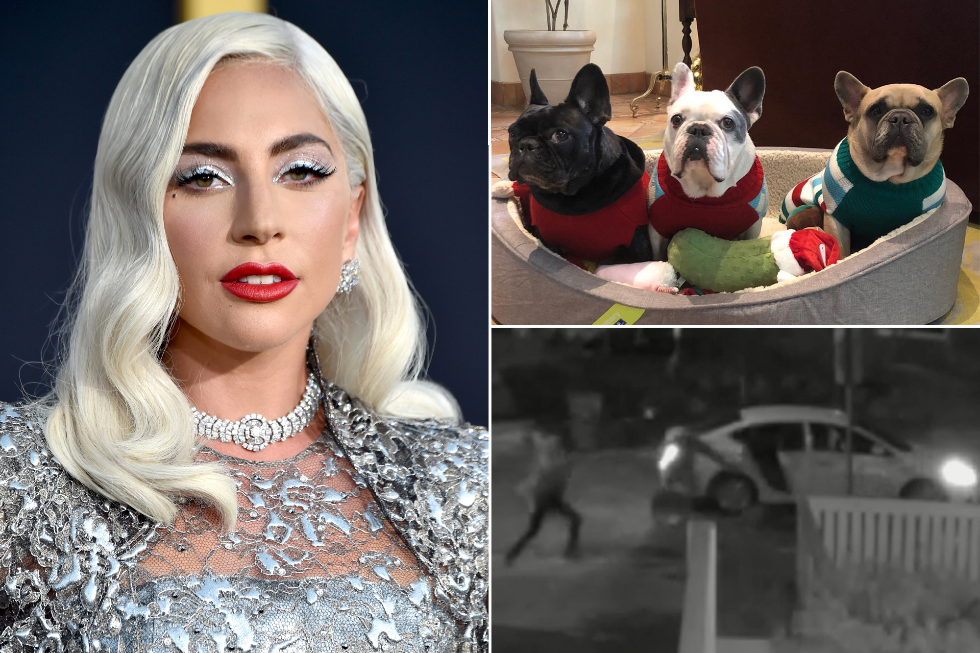 Lady Gaga dognappers charged with attempted murder, robbery